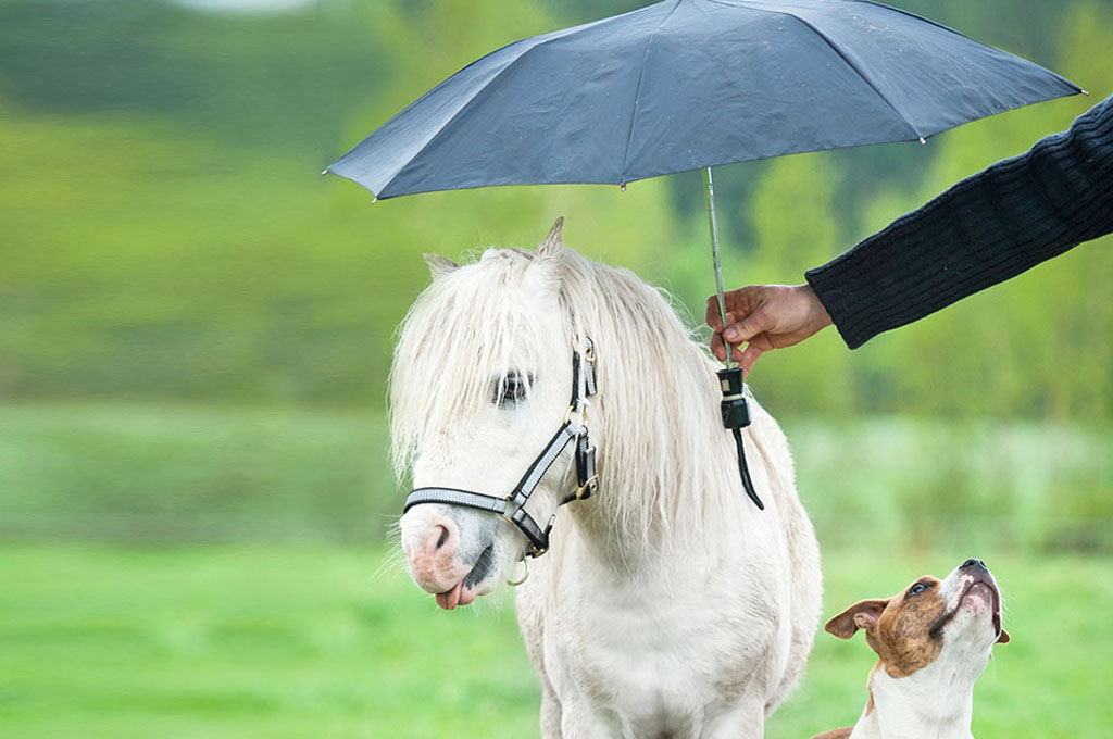 ombrellli personalizzati